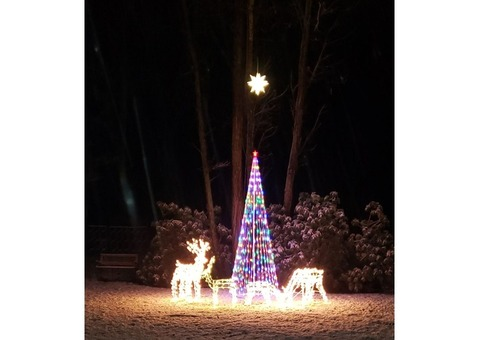 Group of outdoor holiday decorations.